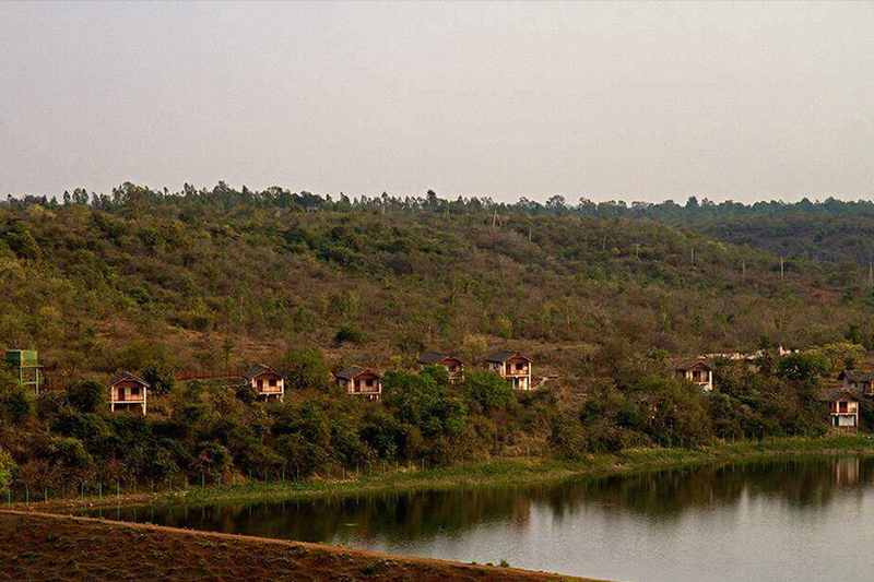 Blackbuck Resort