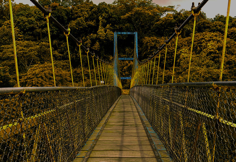 Hanging Bridge Sringeri Portrait