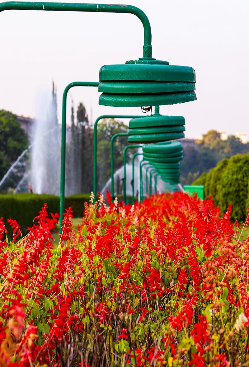 Brindavana Gardens